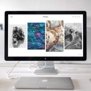 Website and Porftfolio Review